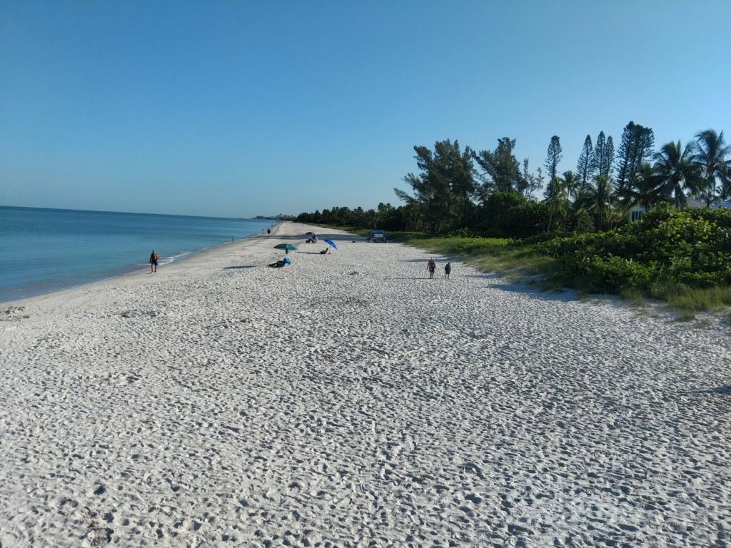 Floride Juillet 2019 : De nouvelles aventures en famille - Page 2 Img_2063