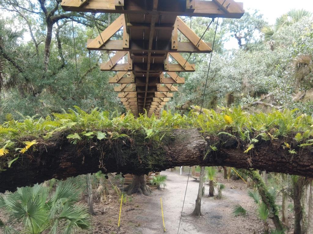 Floride Juillet 2019 : De nouvelles aventures en famille - Page 2 Img_2092