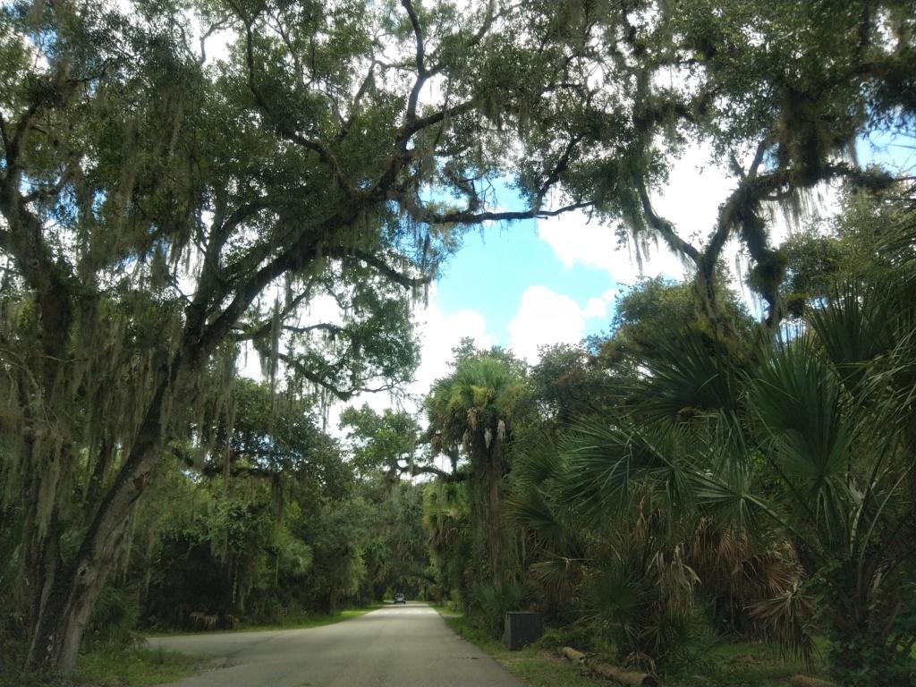 Floride Juillet 2019 : De nouvelles aventures en famille - Page 2 Img_2093