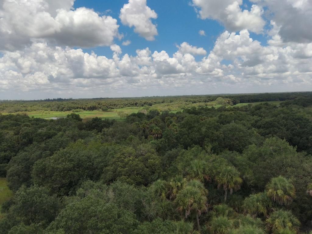 Floride Juillet 2019 : De nouvelles aventures en famille - Page 2 Img_2095
