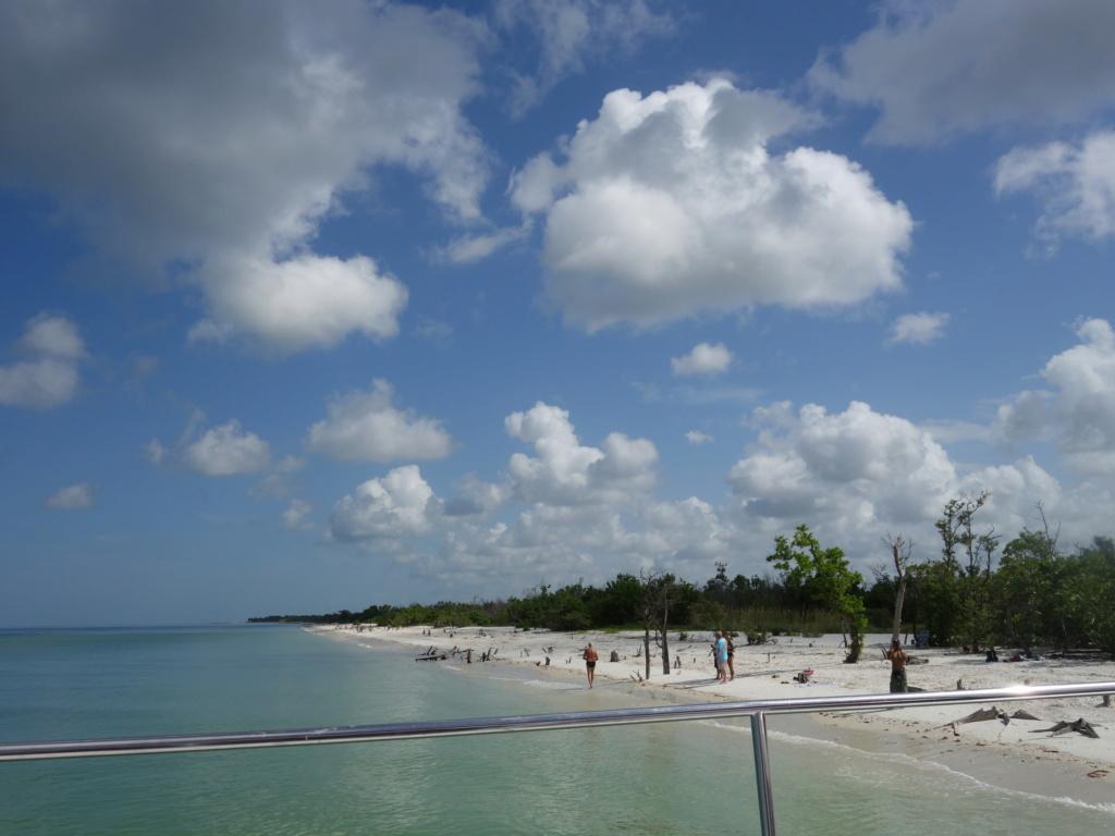 Floride Juillet 2019 : De nouvelles aventures en famille - Page 2 Key_0010