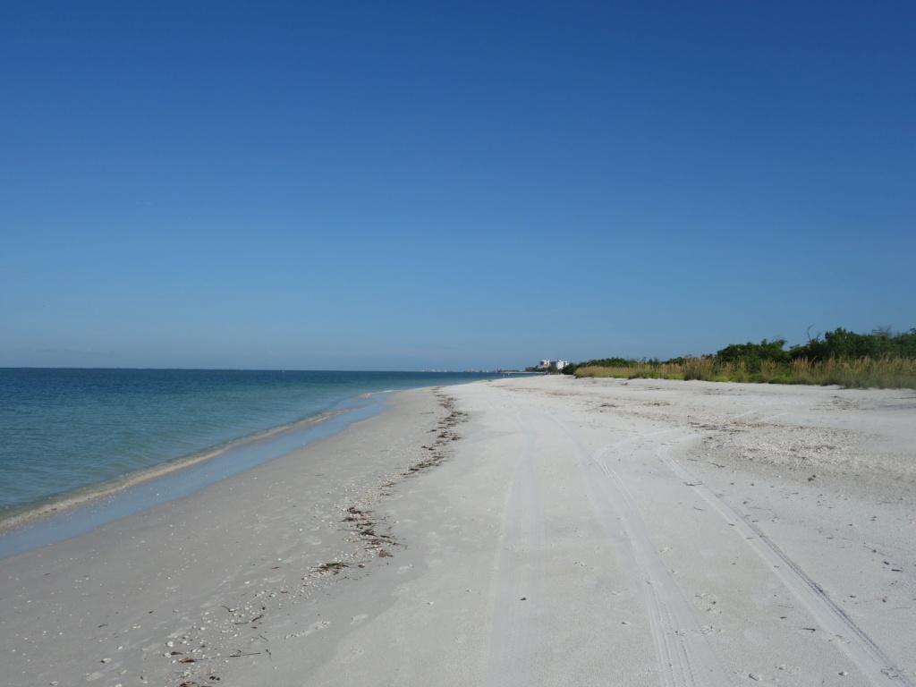 Floride Juillet 2019 : De nouvelles aventures en famille - Page 2 Lovers17
