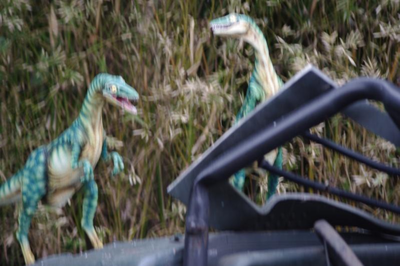 Universal Studios Japan (2011) & Universal Studios Singapore (2012) Trip Report Imgp4315