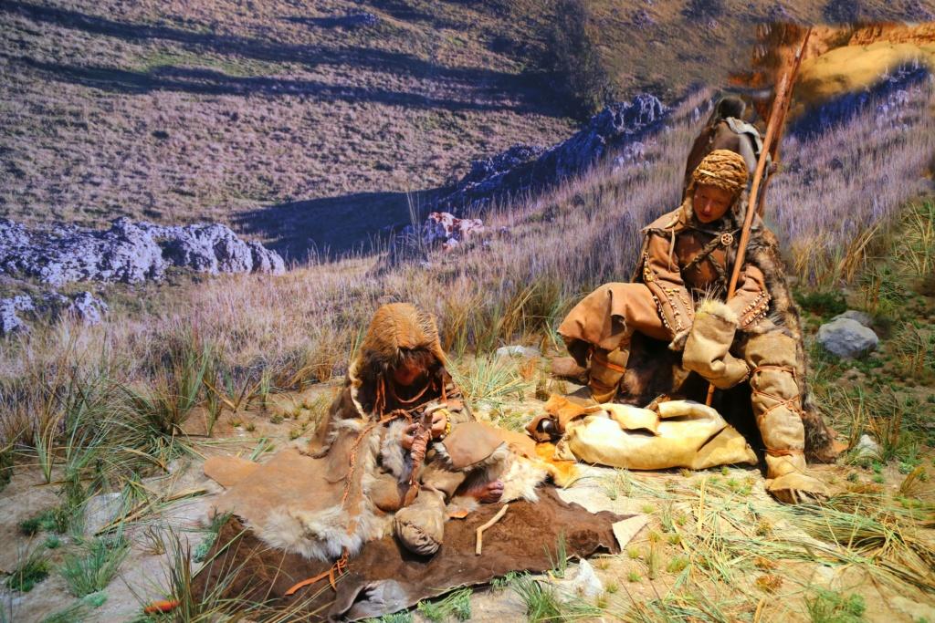 reconstitution d'animaux de la préhistoire  Img_5814