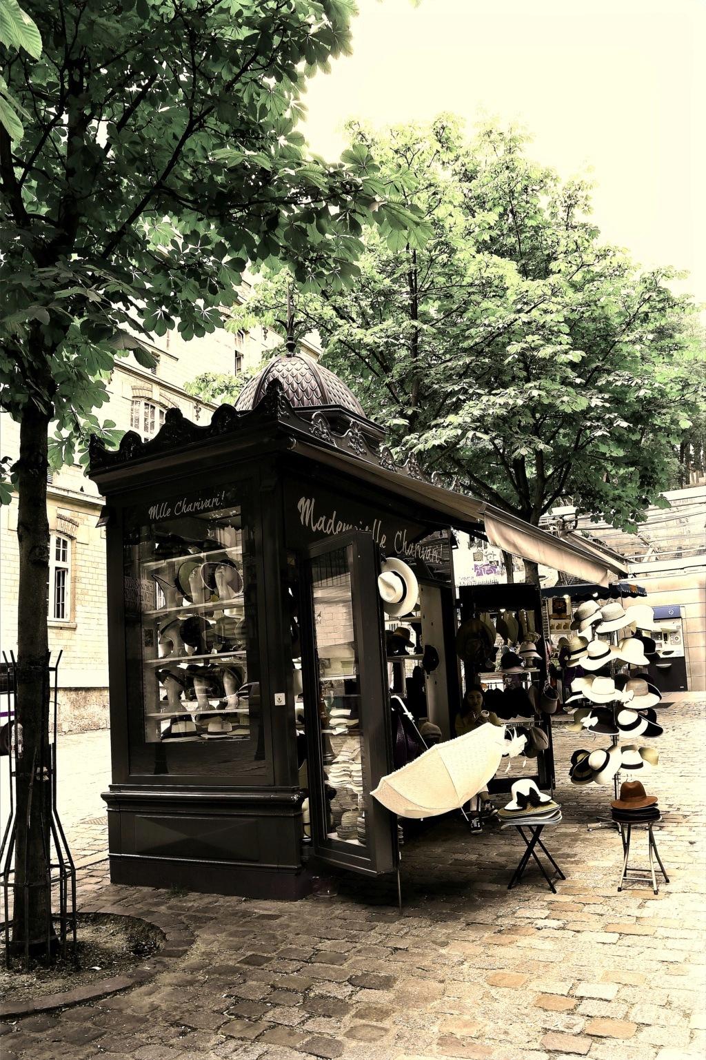 un jour....une tite balade sur Paris avec les z'amis de Fotaniflo  Ok_rv_79