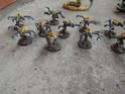 Flotte ruche Niddogg - Page 4 Dscf1111