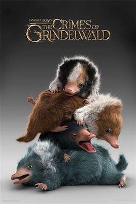 Les Animaux Fantastiques 2, les crimes de Grindelwald - Page 10 01-49010