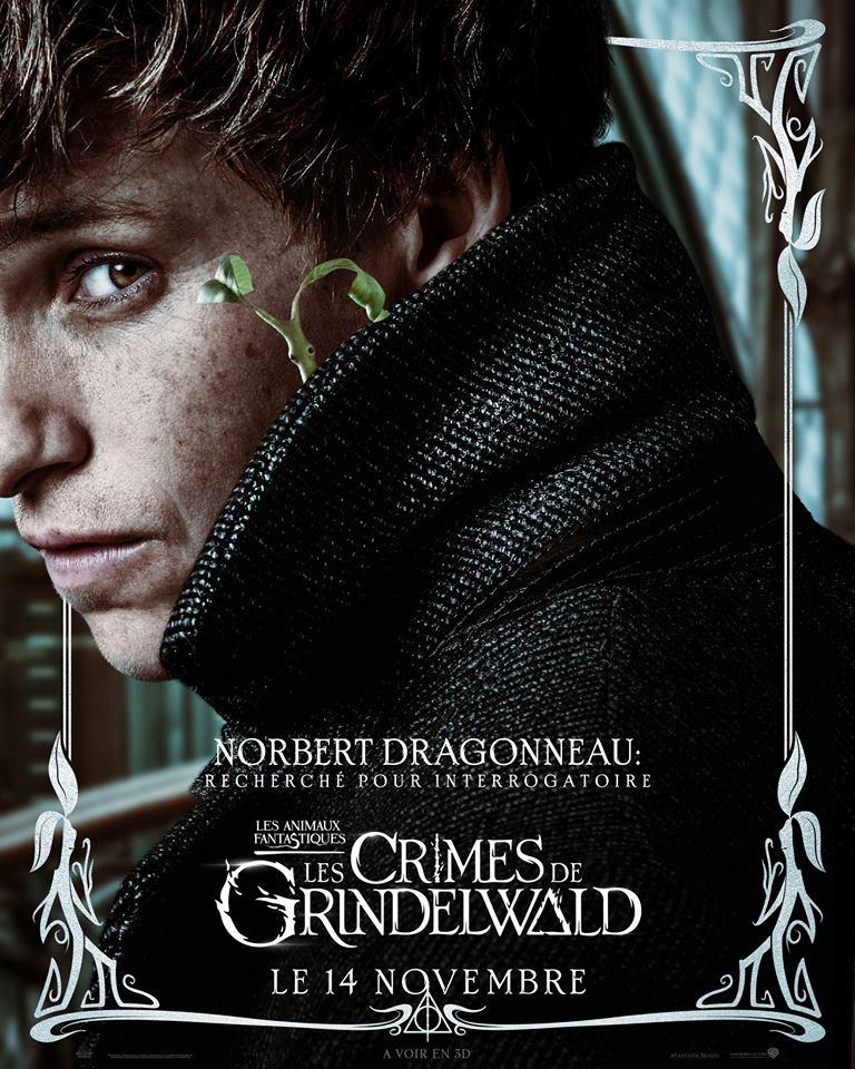 Les Animaux Fantastiques 2, les crimes de Grindelwald - Page 8 42490410