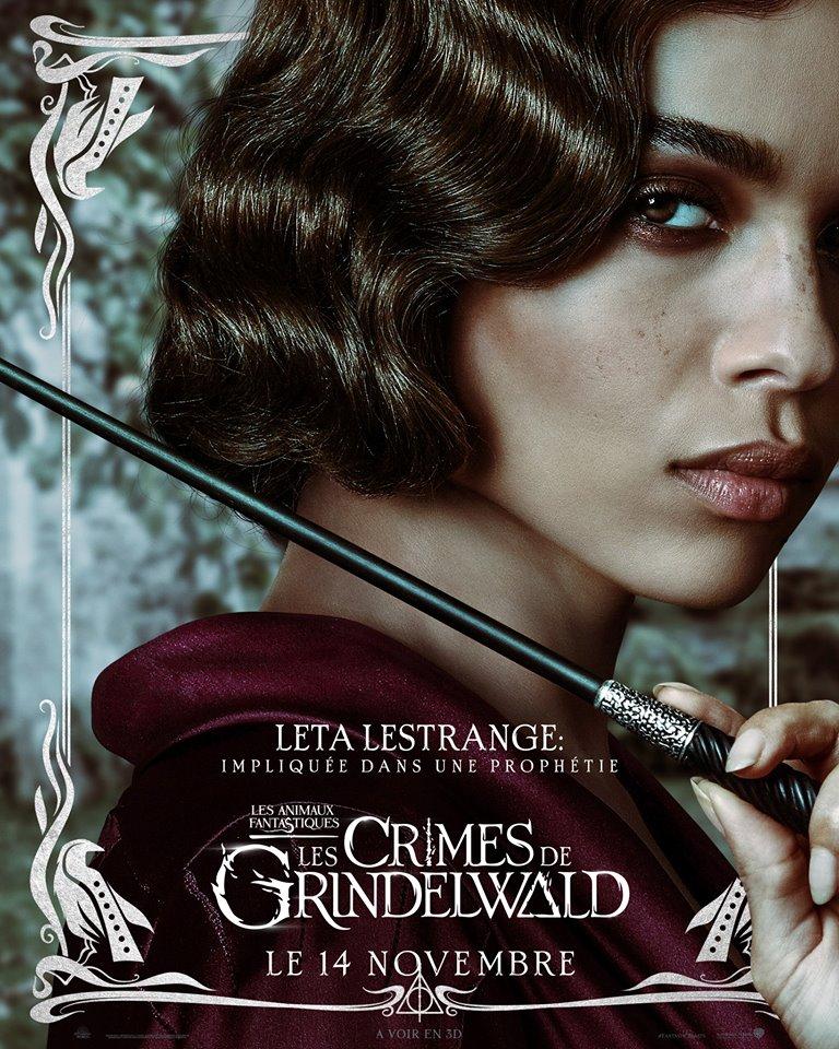 Les Animaux Fantastiques 2, les crimes de Grindelwald - Page 8 42507110