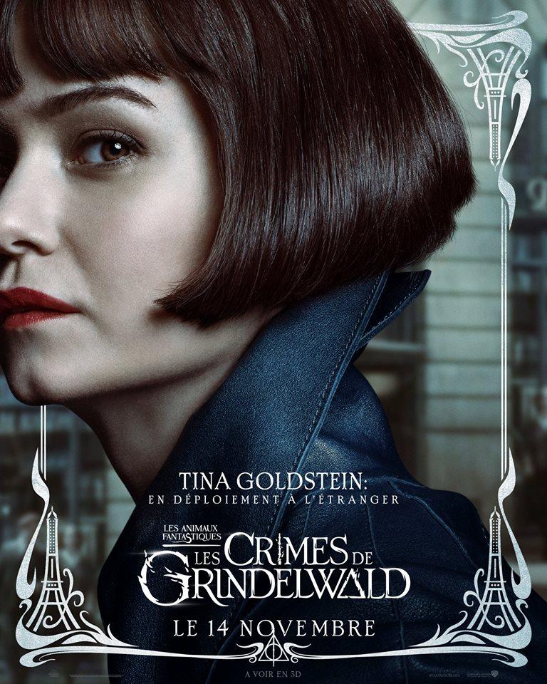 Les Animaux Fantastiques 2, les crimes de Grindelwald - Page 8 42533410