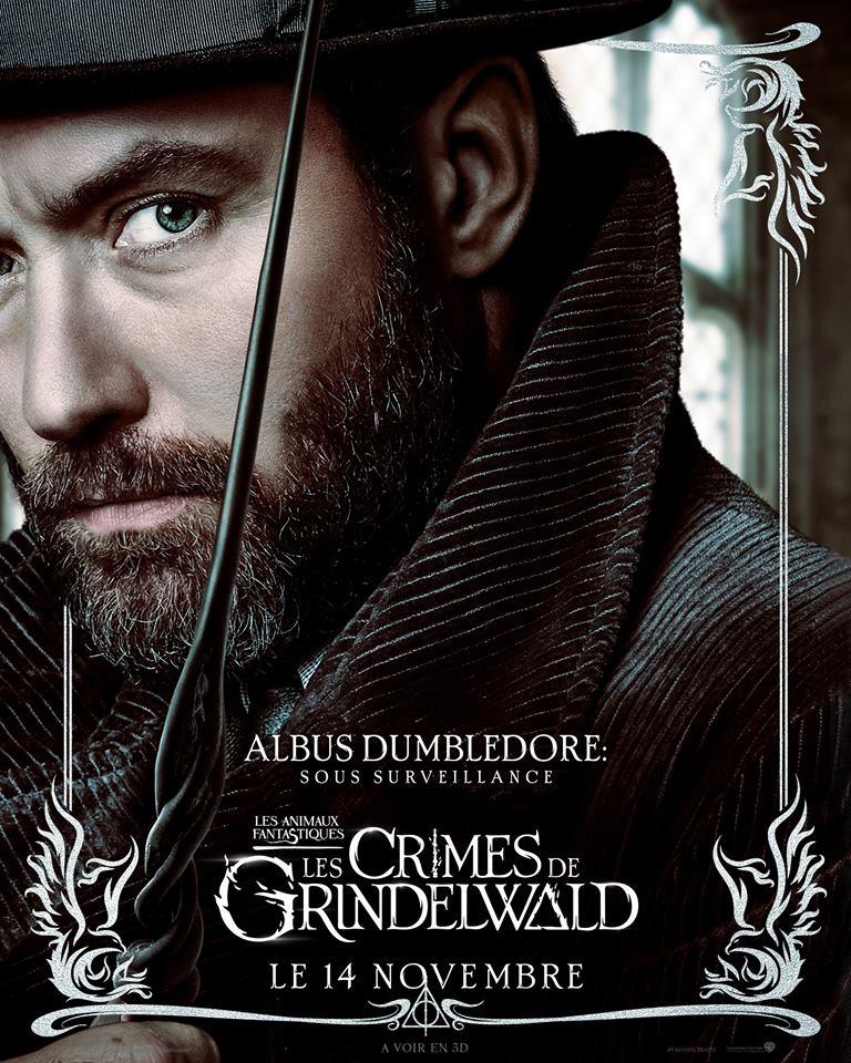 Les Animaux Fantastiques 2, les crimes de Grindelwald - Page 8 42586710