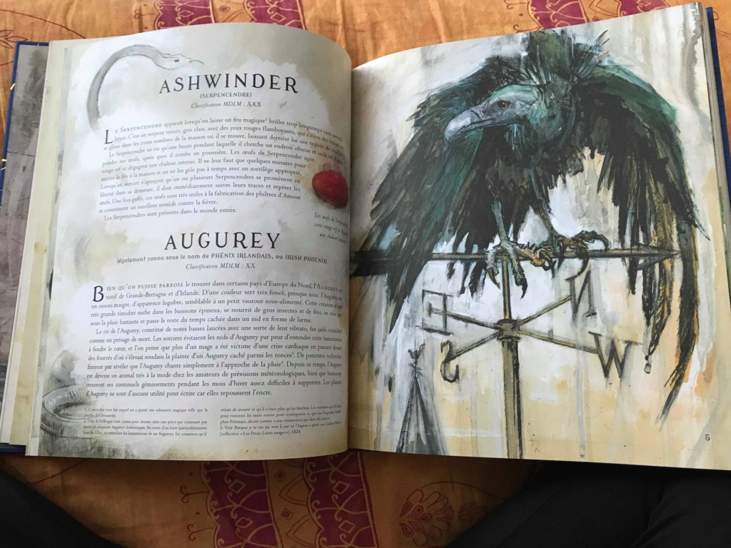 Beaux livres sur les Animaux Fantastiques - Page 4 46423610