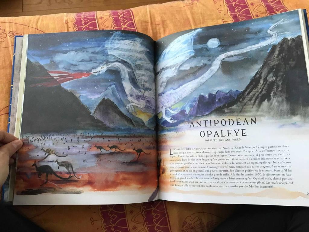 Beaux livres sur les Animaux Fantastiques - Page 4 46449410