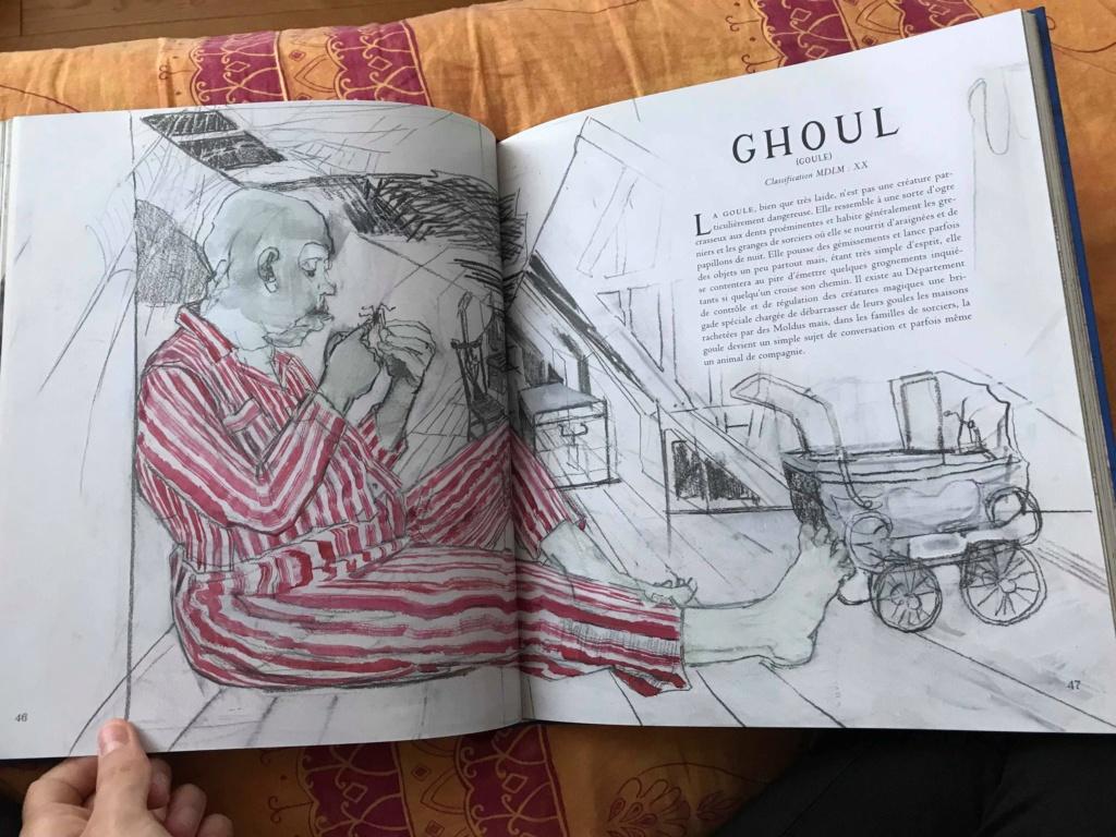 Beaux livres sur les Animaux Fantastiques - Page 4 46488010