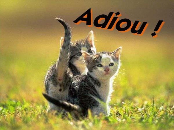 Bonjour, salut, aurevoir, bonne nuit Adiou_10