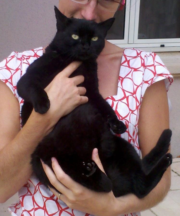 Plus épaisse chatte noire
