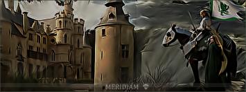 Meridiam Dddds10