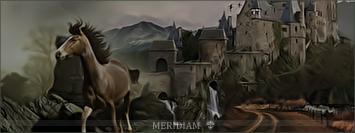 Meridiam Iiii9910