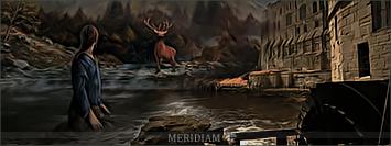 Meridiam Tyrytr10