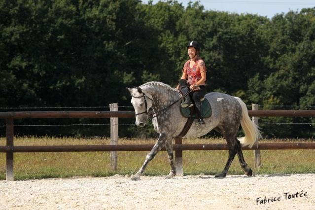 Une cavalière pratiquant, entre autres, l'équitation en amazone Lisbau10
