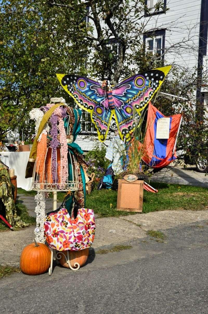 concours photo du mois d'octobre 2011. Thème : Couleur, excentricité, originalité dans la rue Vente-10