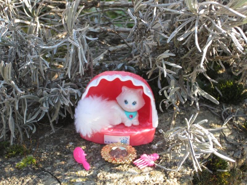 [MTPA] les tout petits amis de Marmotte Photo_12