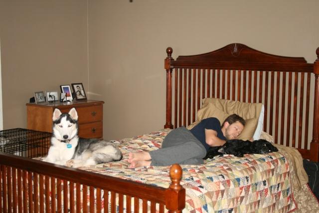 Real men love huskies and malamutes! Img_2914