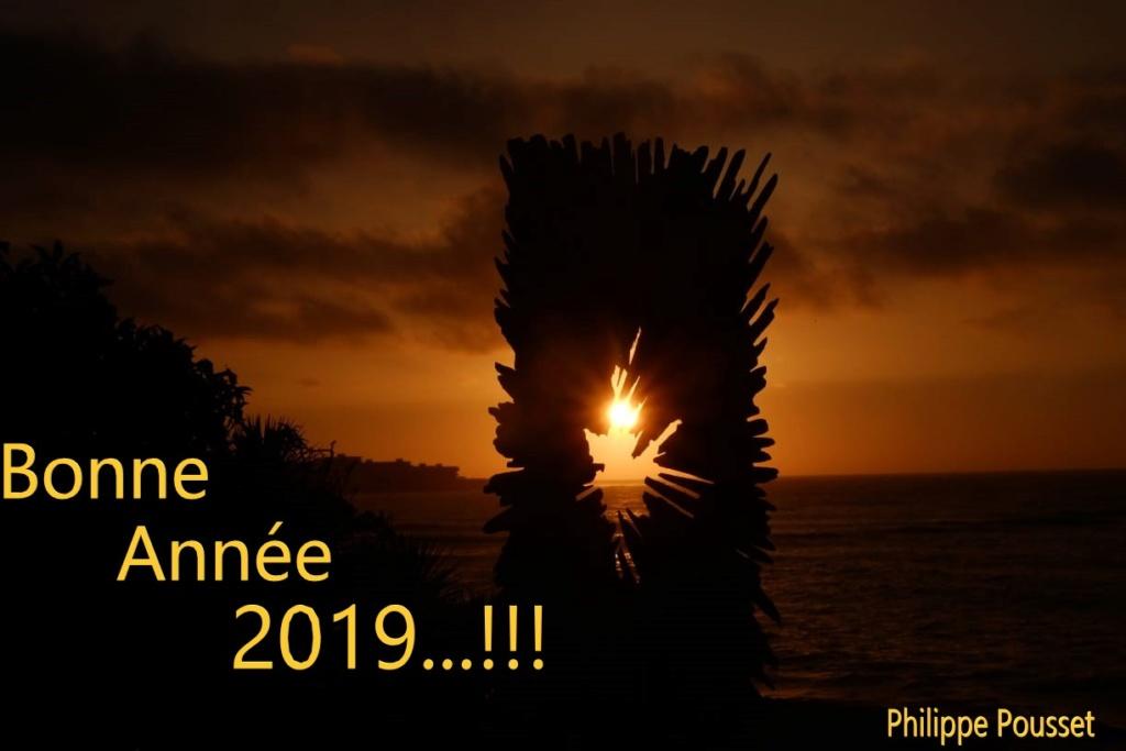 Nouvelle année  Voeux_10