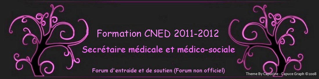 Formation CNED 2011/2012
