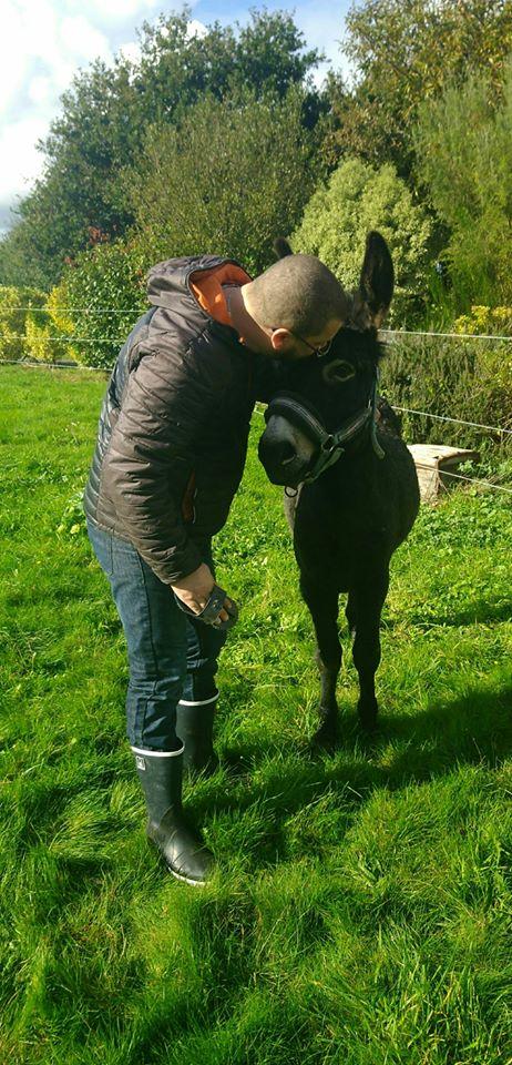 PACO - âne mâle noir - 5 ans Paco_111