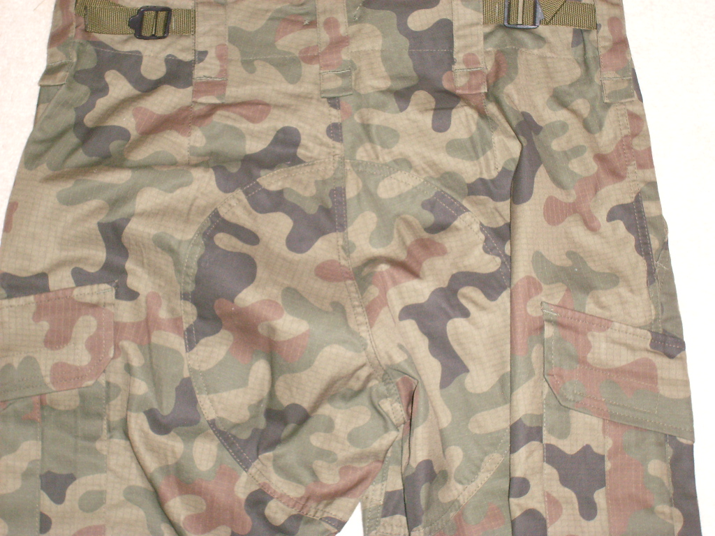 New Polish uniforms - wz.2010 Sl273730
