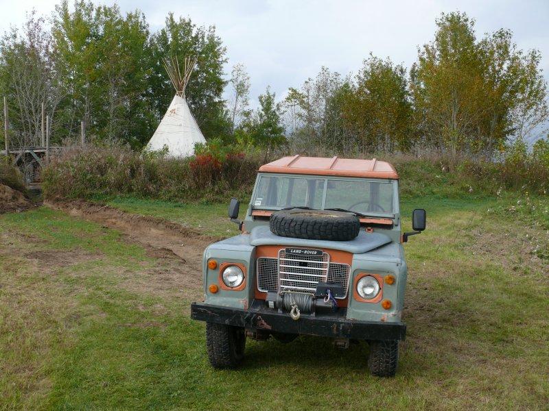 Vie dans la nature au Québec P1410817