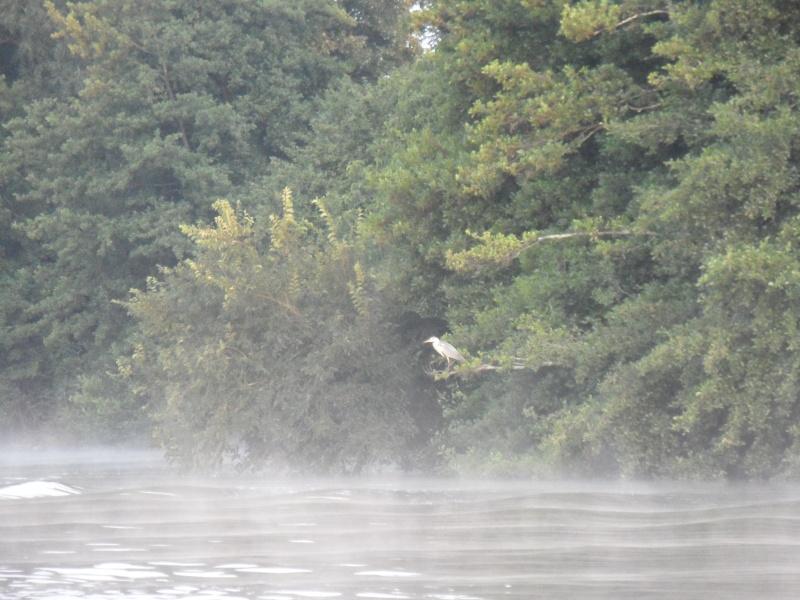 E O bateau PENNE D AGENAIS 2012 Sam_3615