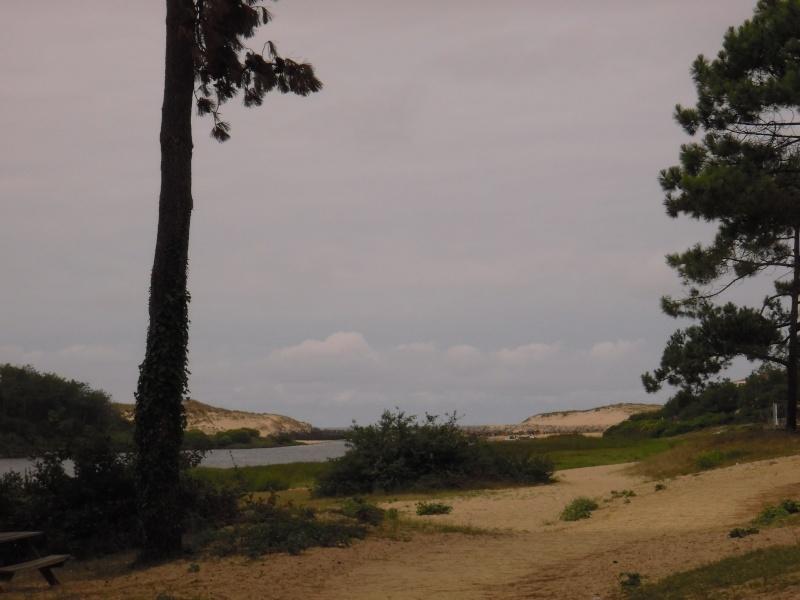 """camping """"lou seurots"""" 4 étoiles a contis plage Landes16"""