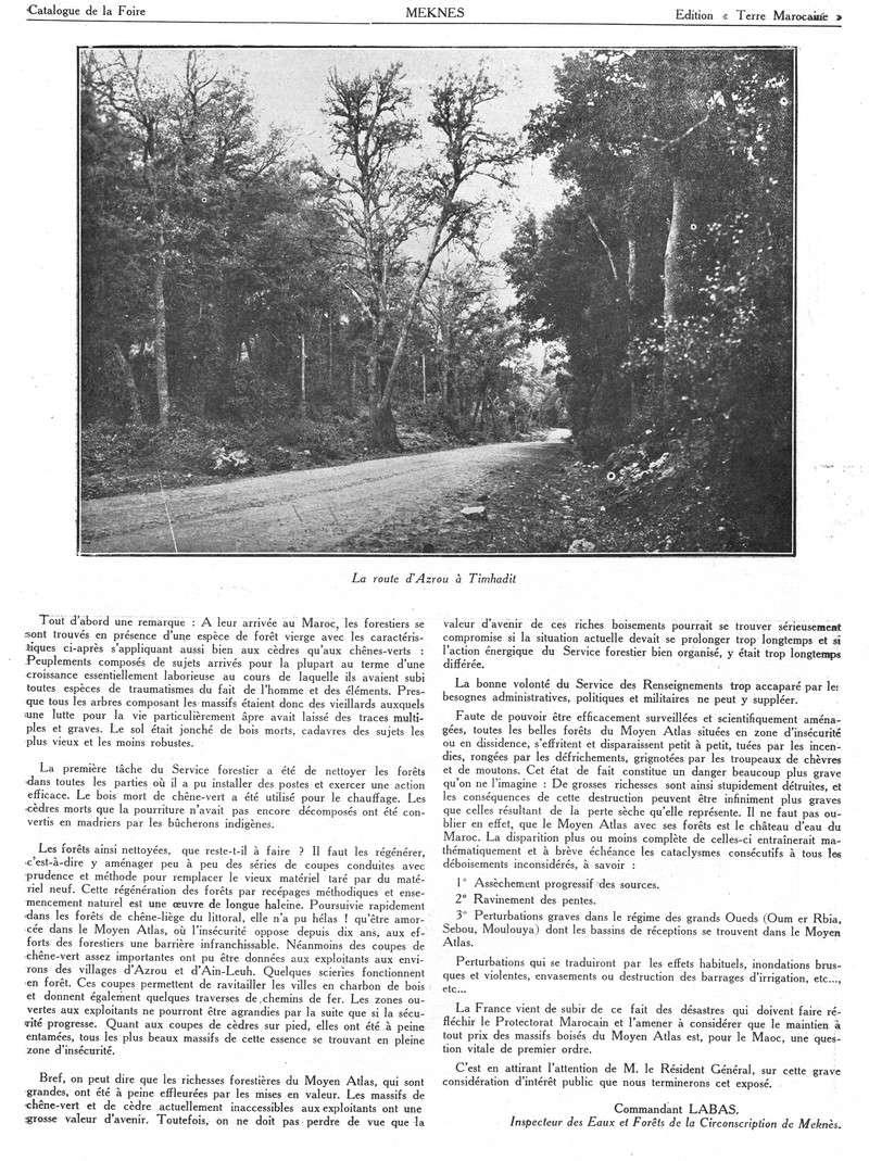 Foire de Meknès - Page 2 Swsca325