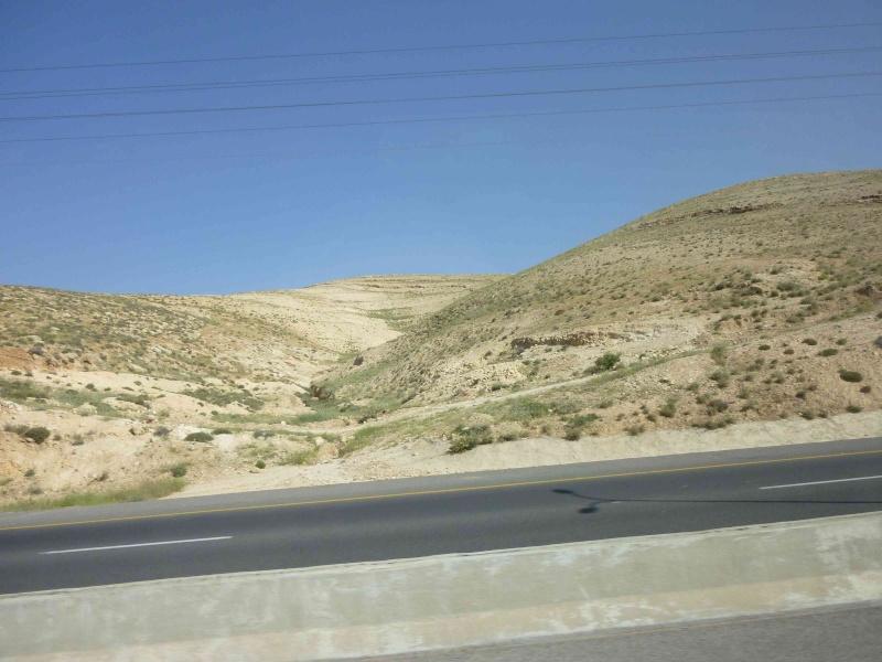 Le désert refleurira P1000910
