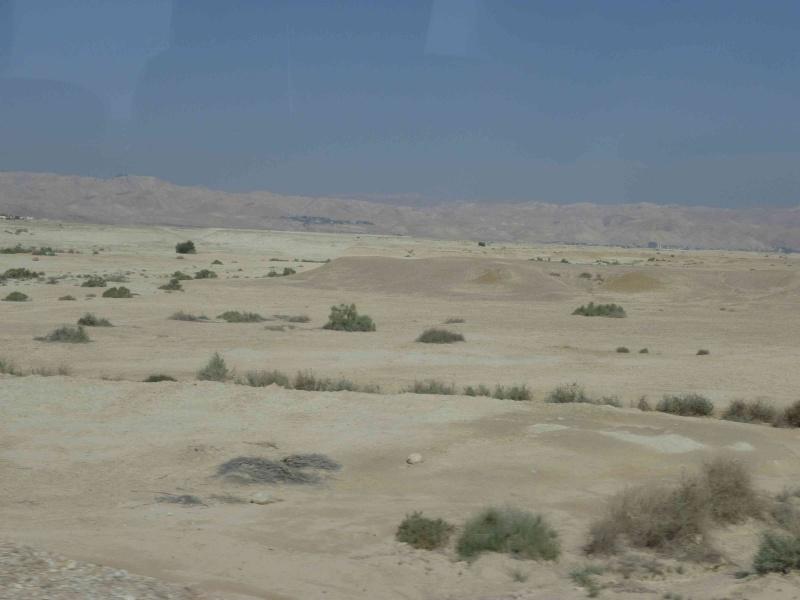 Le désert refleurira P1000911