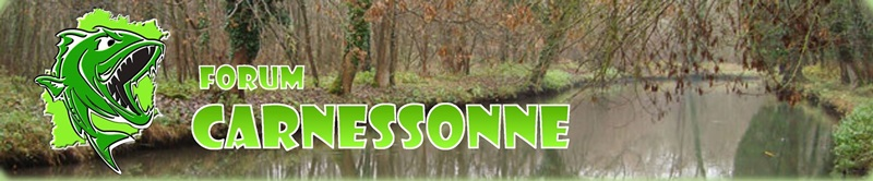 Forum pêche carnassiers en Essonne CARNESSONNE