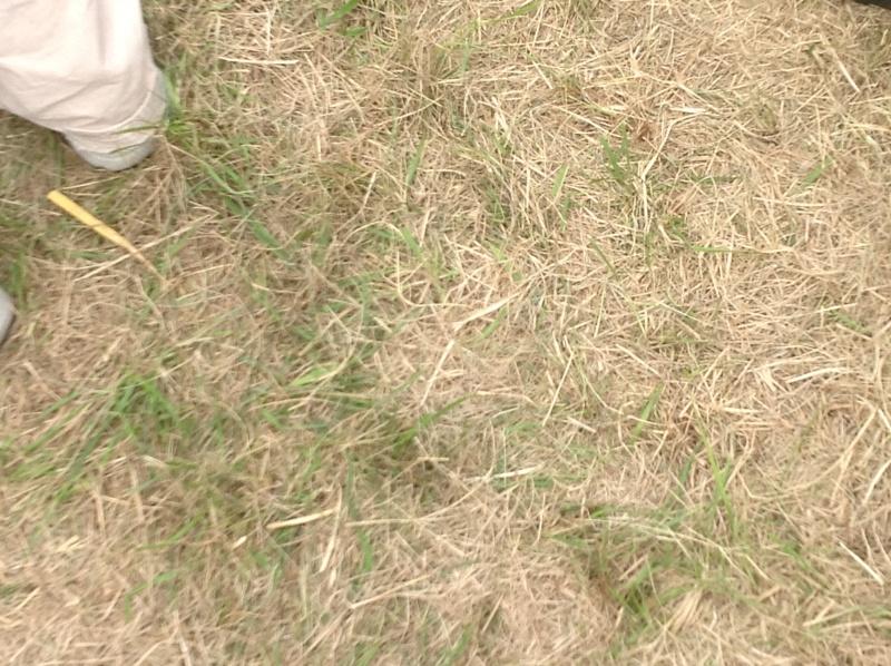 Debrief JPO Avord / 01 Juillet 2012 Img_0112