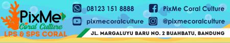 PixMe Coral Culture