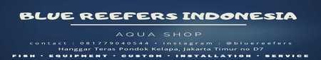 Blue Reefers Indonesia