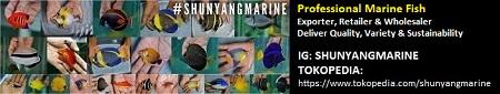Shunyang Marine