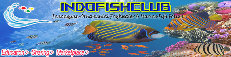 supplier of fresh water fish Untitl12