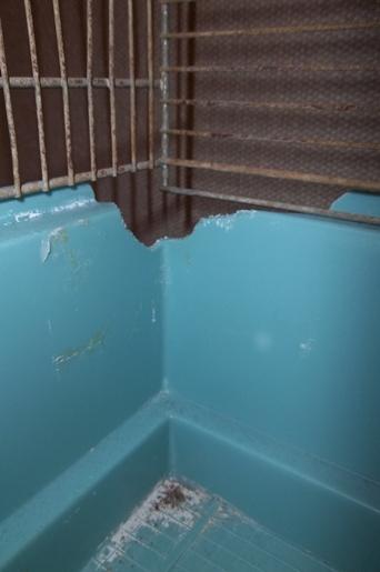 [33] Vends Cage Jenny sans accessoires, pour bricoleur(euse) 100_2312
