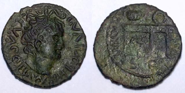 Identification Romaine  ( semis de Néron ) Img_5810