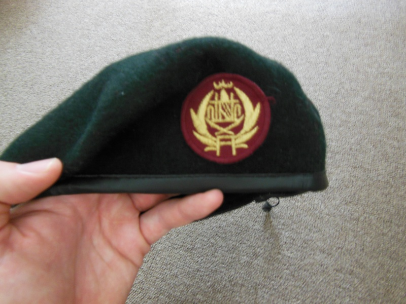 Afghan Beret Badges Dscn1212
