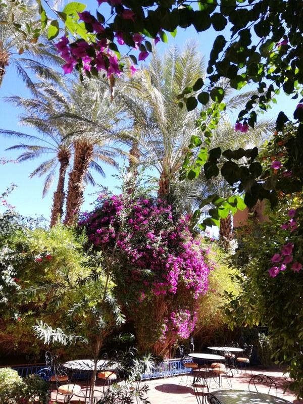 Maroc le sud Chez_a10