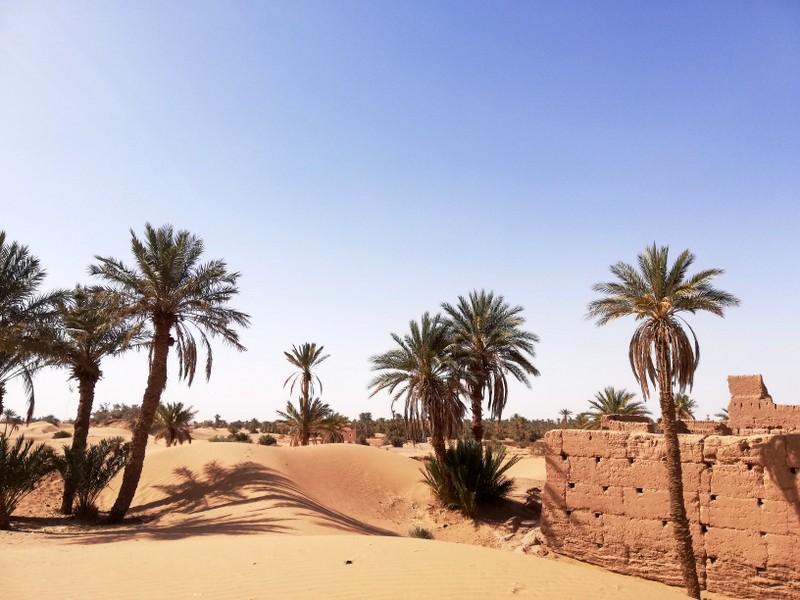 Maroc le sud Img_2021