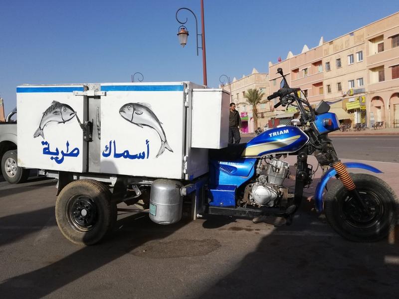 Maroc le sud Trike110