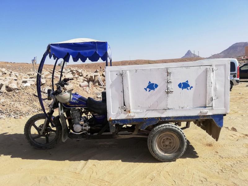 Maroc le sud Trike210